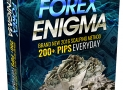 Forex Enigma Review-*DO NOT BUY* READ THIS BEFORE YOU BUY!