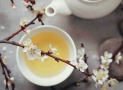 How Does White Tea Helps You to Lose Weight in a Healthy Way?